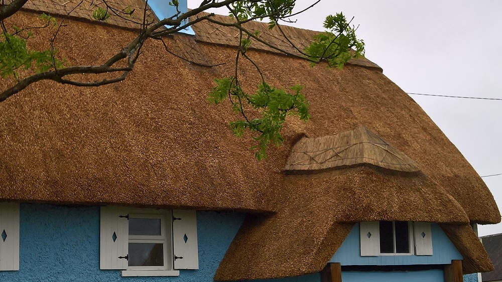 Windows for thatched roofs