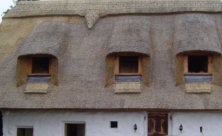 Thatching Windows