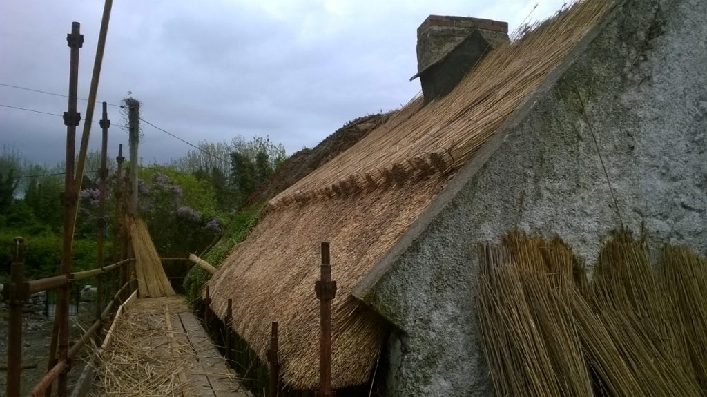 Water Reed thatching in Ireland