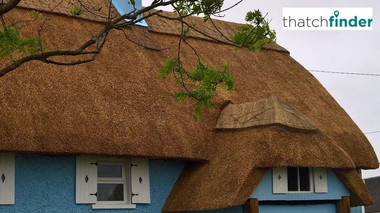 Thatch Finder Free Directory
